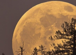 Using a Supermoon to Achieve Your Goals